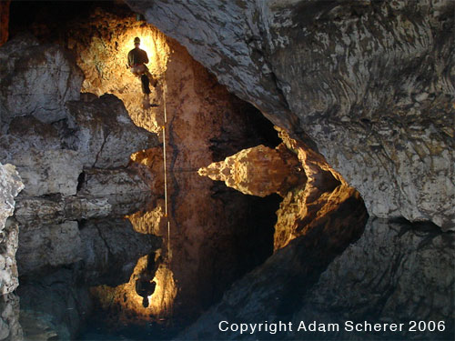 Bill Walker rappels in Briar Cave