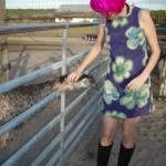 Cara finds the friendly emu