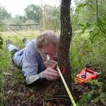 Buford Pruitt surveying